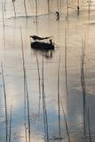 Barco de pesca de Xiapu fotos de stock royalty free