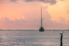 Barco de pesca e gaivota no nascer do sol das caraíbas sobre o mar, Mexi fotografia de stock royalty free