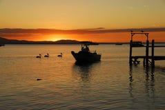 Barco de pesca no por do sol Imagem de Stock