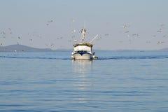 Barco de pesca seguido pelo rebanho da gaivota Imagens de Stock