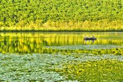 Barco de pesca solo en un lago hermoso Imágenes de archivo libres de regalías