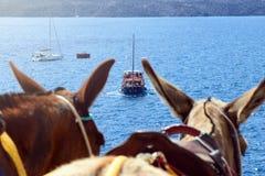 Barco de prazer com os turistas no fundo das montanhas fora da costa da ilha grega de Fira fotos de stock royalty free
