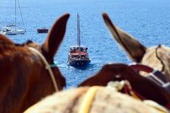 Barco de prazer com os turistas no fundo das montanhas fora da costa da ilha grega de Fira fotos de stock