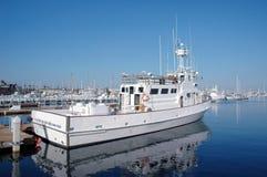Barco de Sportfishing fotografia de stock royalty free