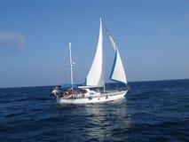 Barco de vela Fotos de archivo