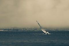 Barco de vela en San tempestuoso Francisco Bay Fotos de archivo