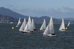 Barco de vela que compite con en San Francisco Bay Foto de archivo