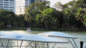 Barco del pato en el lago Imágenes de archivo libres de regalías