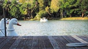 Barco del pato para el fondo Foto de archivo libre de regalías