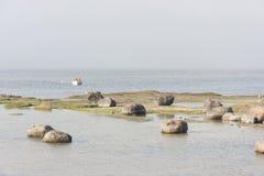 Barco del remo en el mar brumoso cerca de la costa Foto de archivo