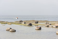Barco do remo no mar enevoado perto da costa Foto de Stock