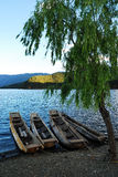 Barco e árvore fotos de stock royalty free