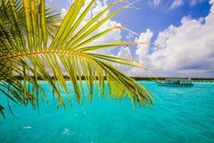 Barco e isla de vela fotos de archivo