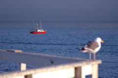 Barco e observador de pesca Fotos de Stock Royalty Free