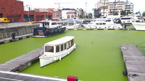 Barco en agua verde Foto de archivo