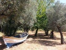 Barco en el jardín Imagen de archivo