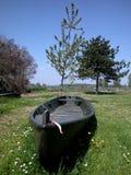 Barco en el prado Fotografía de archivo