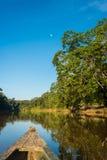 Barco en el río en la selva peruana del Amazonas en Madre de Dios Foto de archivo libre de regalías