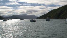 Barco en la bahía del picton, Nueva Zelandia almacen de video