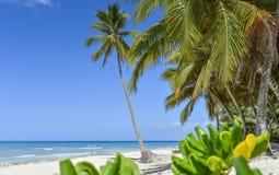 Barco en la playa tropical Imagen de archivo