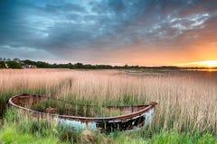 Barco en las cañas Imagenes de archivo