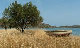 Barco en orilla mediterránea cerca del olivo Fotografía de archivo