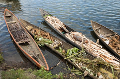 Barco malgaxe tradicional - canoe na praia africana imagem de stock