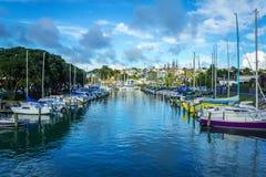 Barco Marina Milford Beach Auckland New Zealand; durante Sunny Day foto de stock royalty free