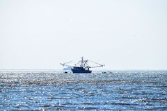 Barco na água Foto de Stock Royalty Free