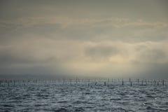 Barco na névoa baía no oceano, Arcachon, Gironda, França foto de stock