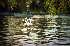 Barco no rio Fotografia de Stock Royalty Free
