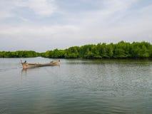 Barco no rio Forest Conservation dos manguezais imagem de stock