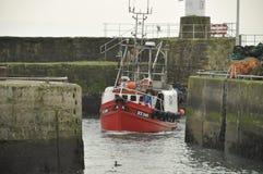 Barco rastreador Pittenweem Escocia Reino Unido de la pesca Fotografía de archivo