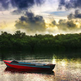 Barco a remos Foto de Stock