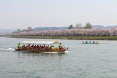 Barco turístico y flores de cerezo de la orilla de Kitakami en Japón Fotos de archivo libres de regalías