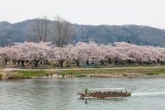 Barco turístico y flores de cerezo de la orilla de Kitakami en Japón Fotografía de archivo libre de regalías