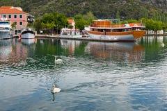 Barco y cisnes turísticos en Skradin, Croacia imagenes de archivo