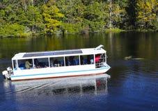 Barco y Manatees del viaje del río Fotografía de archivo