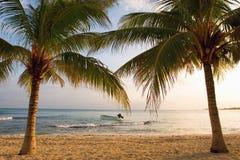 Barco y palmeras en la puesta del sol Imagen de archivo libre de regalías