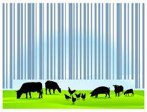 Barcode agriculture royalty free illustration
