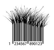 Barcode of grass Royalty Free Stock Photos