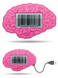 barcode mózg kabla ekranu usb royalty ilustracja