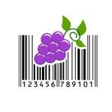 Barcode också vektor för coreldrawillustration Fotografering för Bildbyråer