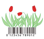 Barcode with tulips. Some tulips stylized as barcode Stock Photos