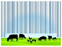 Barcodelandwirtschaft lizenzfreie abbildung