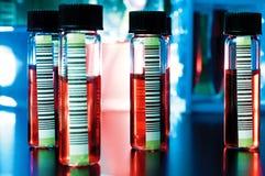 Barcodes auf medizinischen Proben Stockbild