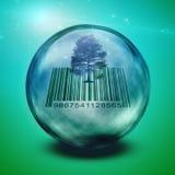 Barcodeträd i exponeringsglas Arkivbild