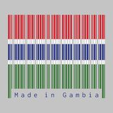 Barcodeuppsättning färgen av den Gambia flaggan, röda blått och grön färg och avskilt av en narrowband av vit vektor illustrationer