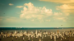 The Barcolana regatta in the gulf of Trieste. One of the biggest regatta in the world with more than 2100 boats: the Barcolana Royalty Free Stock Image