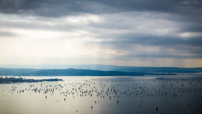 Barcolana regatta of Trieste Royalty Free Stock Photography